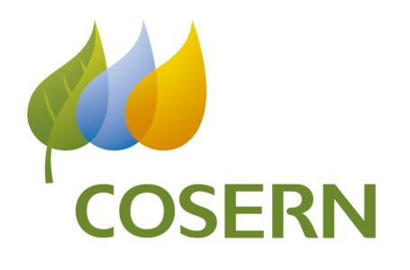Coronavírus: Cosern faz inspeções em 80 unidades de saúde e 25 unidades prisionais do RN