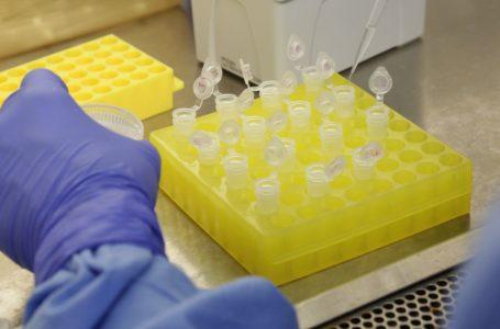 Hospital investiga se pacientes foram reinfectados pelo coronavírus