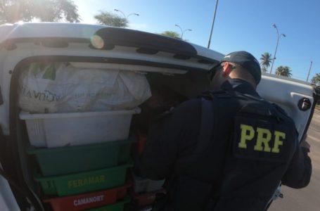 PRF detém dois homens com carga de camarão sem nota fiscal em Macaíba/RN