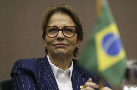 Força-tarefa ajudará na regularização fundiária da Amazônia Legal