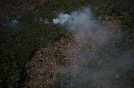 Governo prorroga presença das Forças Armadas na Amazônia até abril de 2021, informa Planalto