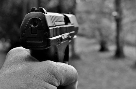 Governo federal zera alíquota de importação de revólveres e pistolas