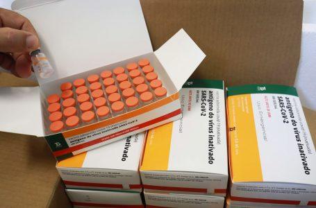 Butantan estima que 100 milhões de doses da Coronavac serão entregues até agosto