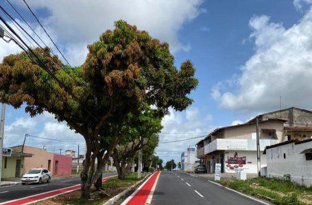 Zona Norte de Natal vai ganhar novos 15 km de ciclofaixas, diz STTU