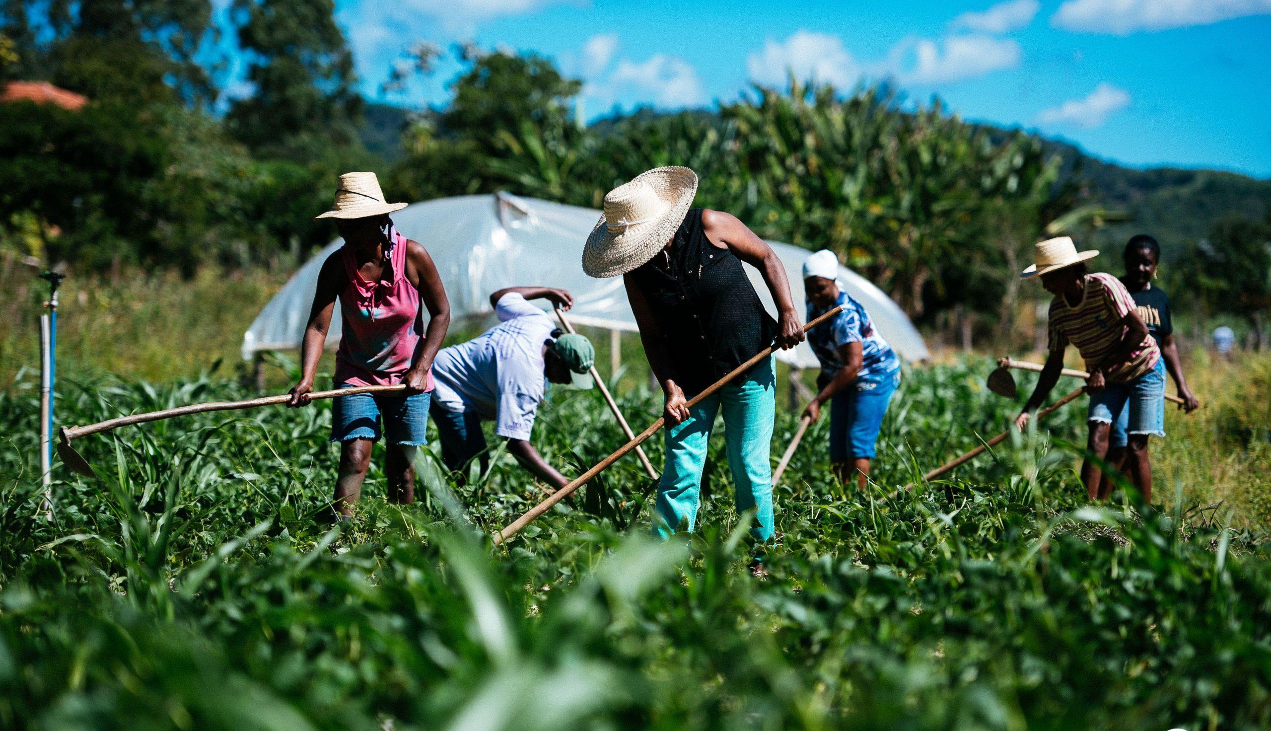 Governo do RN entrega título de terras para agricultores de Jucurutu nesta sexta-feira (11)