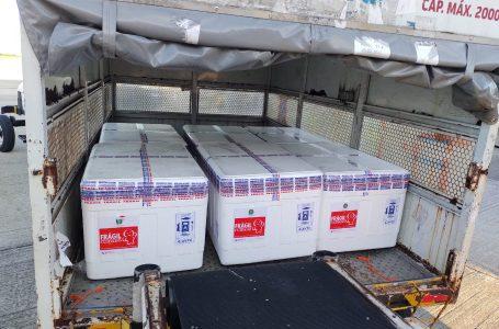 Sesap distribui novo lote com 61 mil doses da Astrazeneca amanhã (16)
