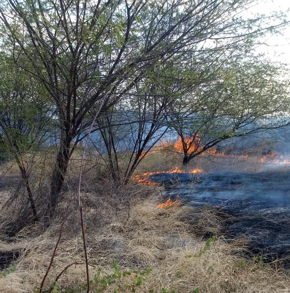 Incêndio de grandes proporções na bacia do Açude Itans, em Caicó, destrói  cerca de 60% da vegetação local - Rádio 98 FM Natal
